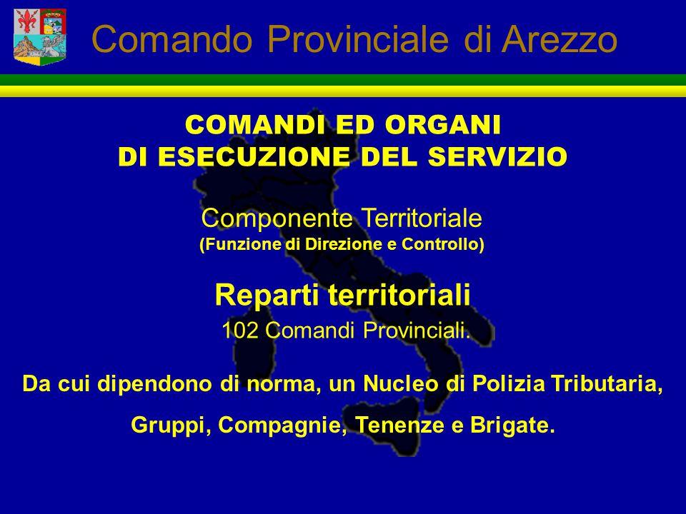 DI ESECUZIONE DEL SERVIZIO (Funzione di Direzione e Controllo)