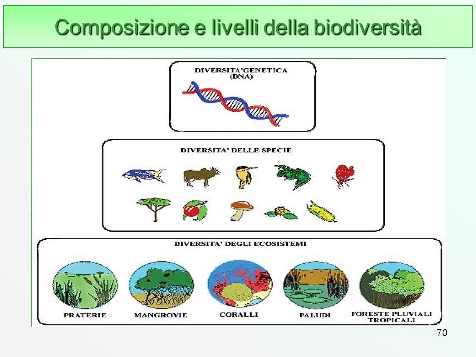 Composizione e livelli della biodiversità