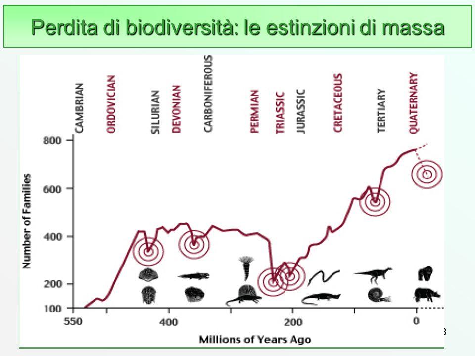 Perdita di biodiversità: le estinzioni di massa