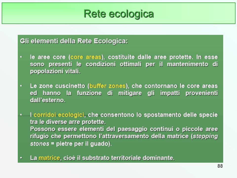 Rete ecologica 88