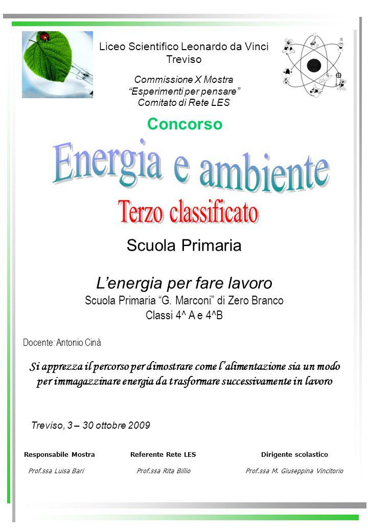 Energia e ambiente Terzo classificato Concorso Scuola Primaria