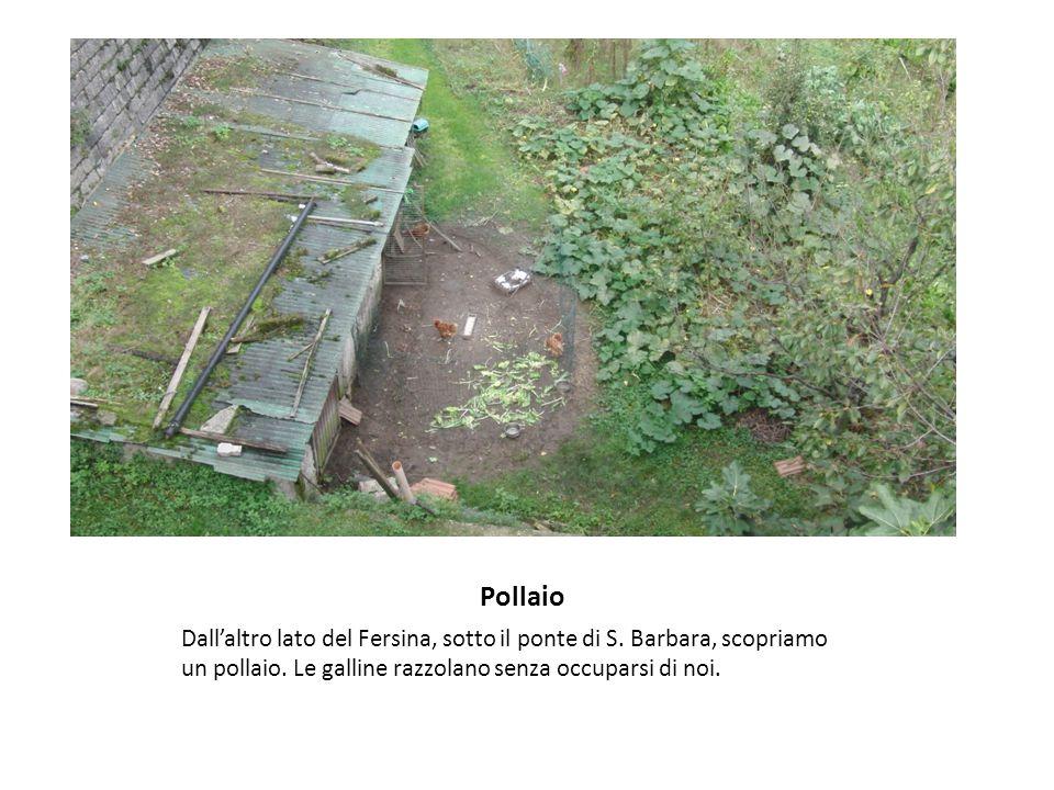 Pollaio Dall'altro lato del Fersina, sotto il ponte di S.