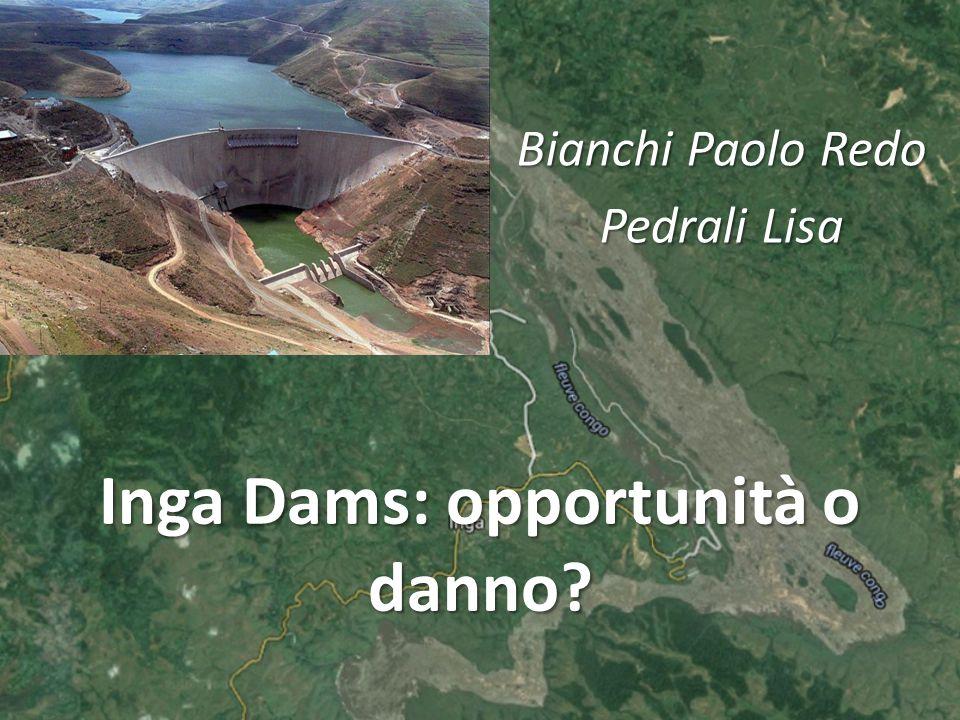 Inga Dams: opportunità o danno