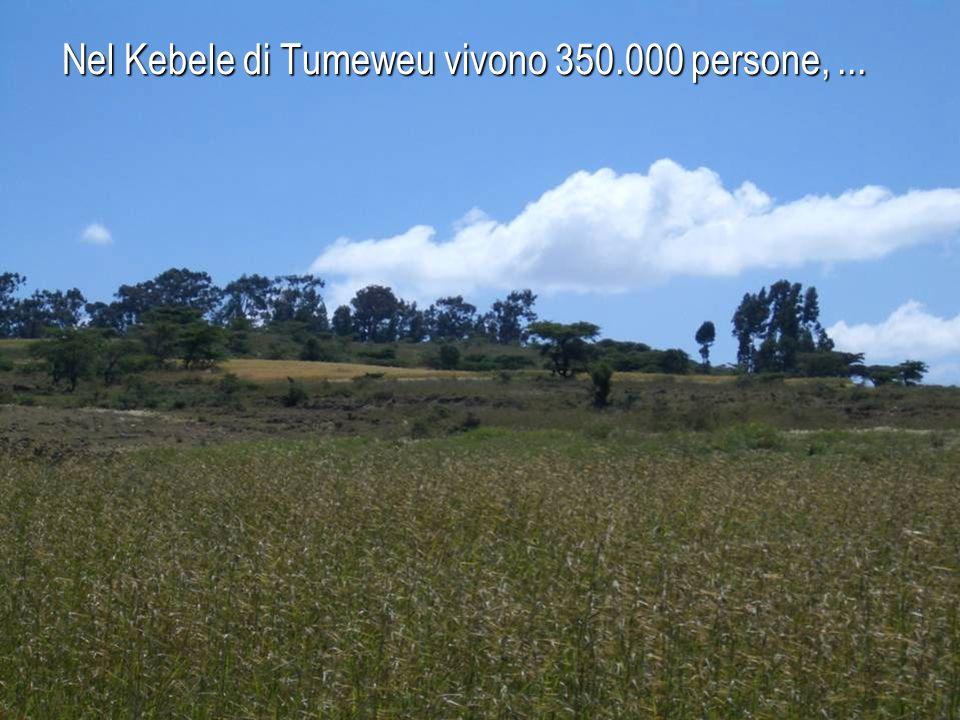 Nel Kebele di Tumeweu vivono 350.000 persone, ...