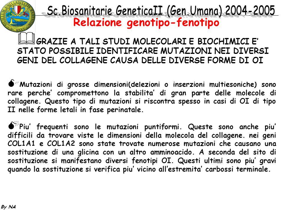 Relazione genotipo-fenotipo
