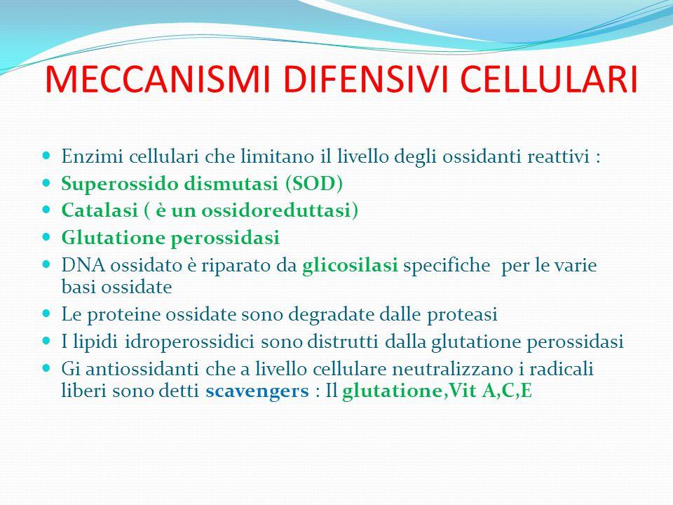 MECCANISMI DIFENSIVI CELLULARI