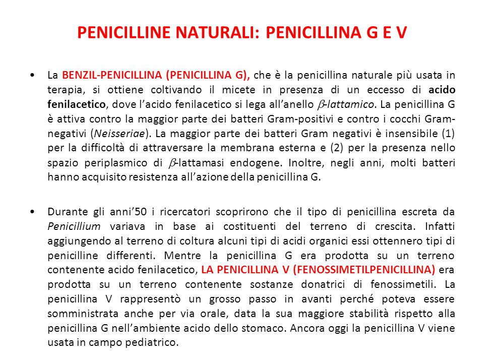 Penicilline naturali: penicillina G e V