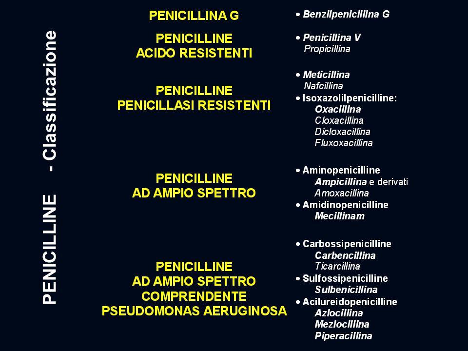PENICILLINE - Classificazione