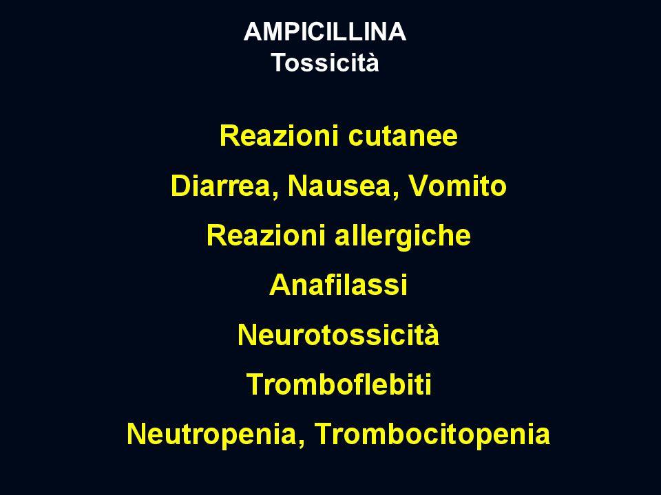 AMPICILLINA Tossicità