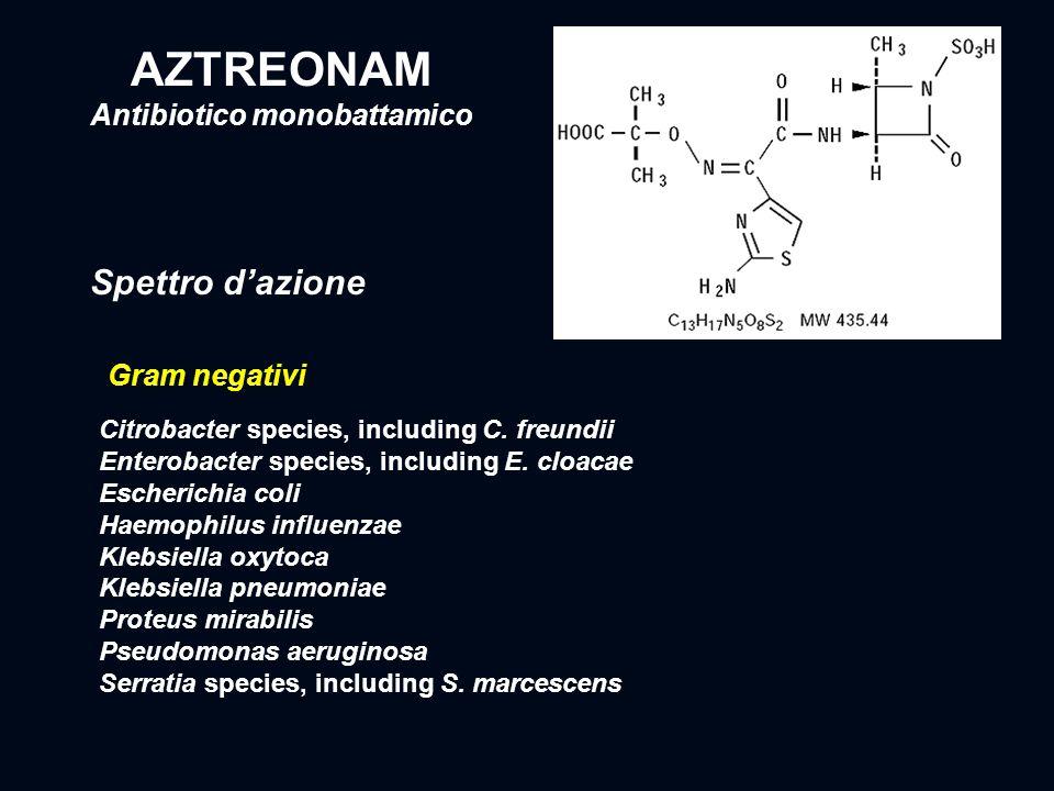 Antibiotico monobattamico