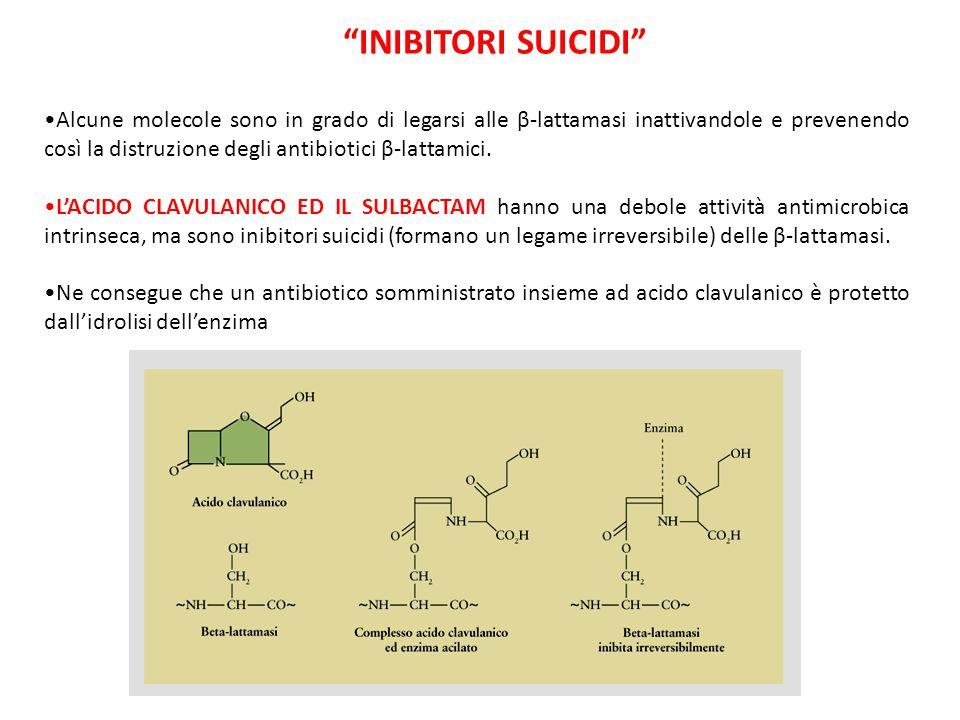 Inibitori suicidi