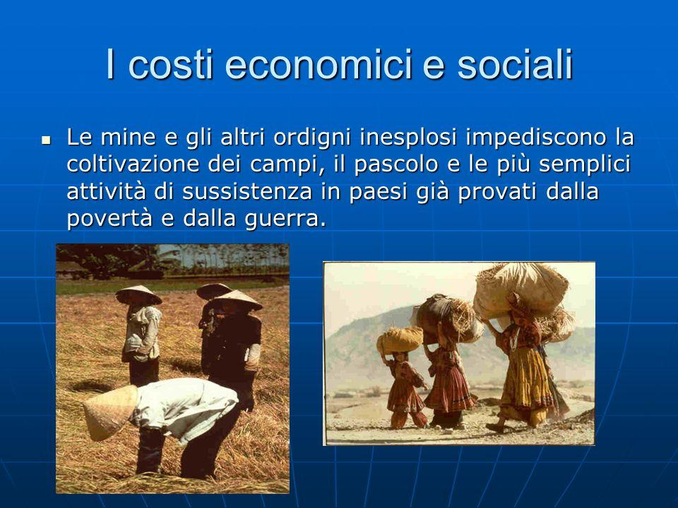 I costi economici e sociali