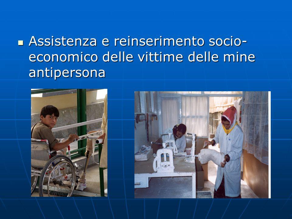 Assistenza e reinserimento socio- economico delle vittime delle mine antipersona