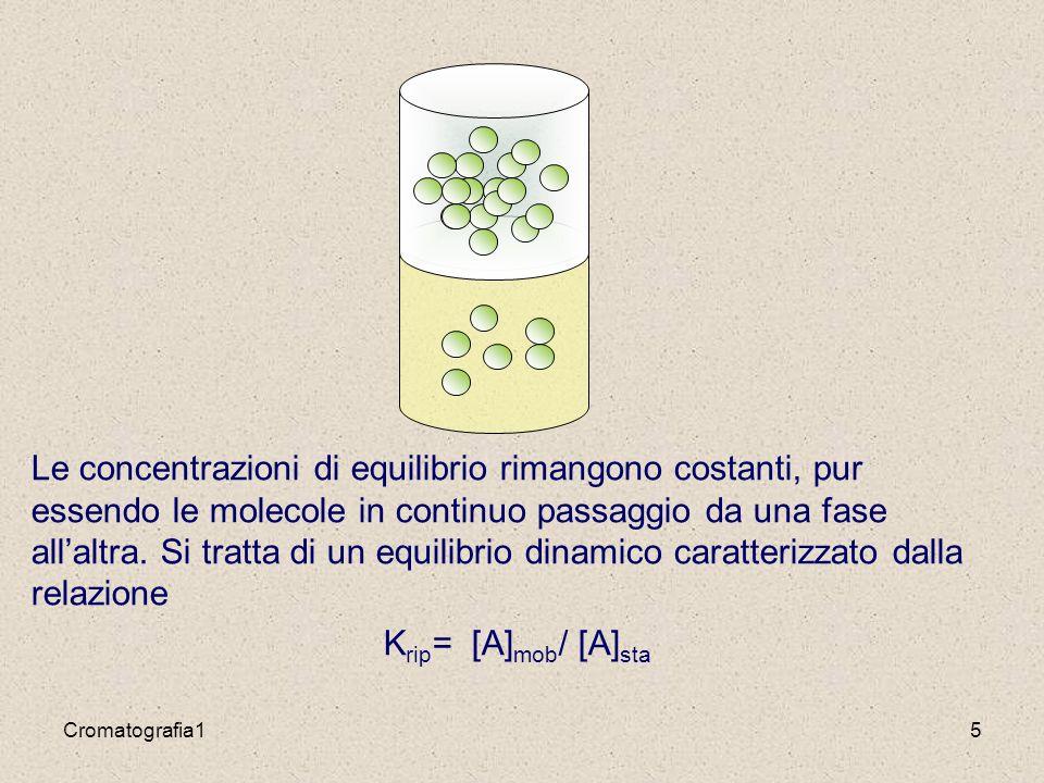 Le concentrazioni di equilibrio rimangono costanti, pur essendo le molecole in continuo passaggio da una fase all'altra. Si tratta di un equilibrio dinamico caratterizzato dalla relazione