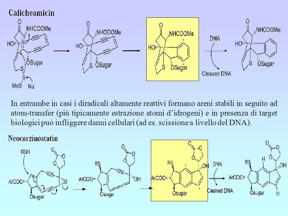In entrambe in casi i diradicali altamente reattivi formano areni stabili in seguito ad atom-transfer (più tipicamente estrazione atomi d'idrogeni) e in presenza di target biologici può infliggere danni cellulari (ad es.