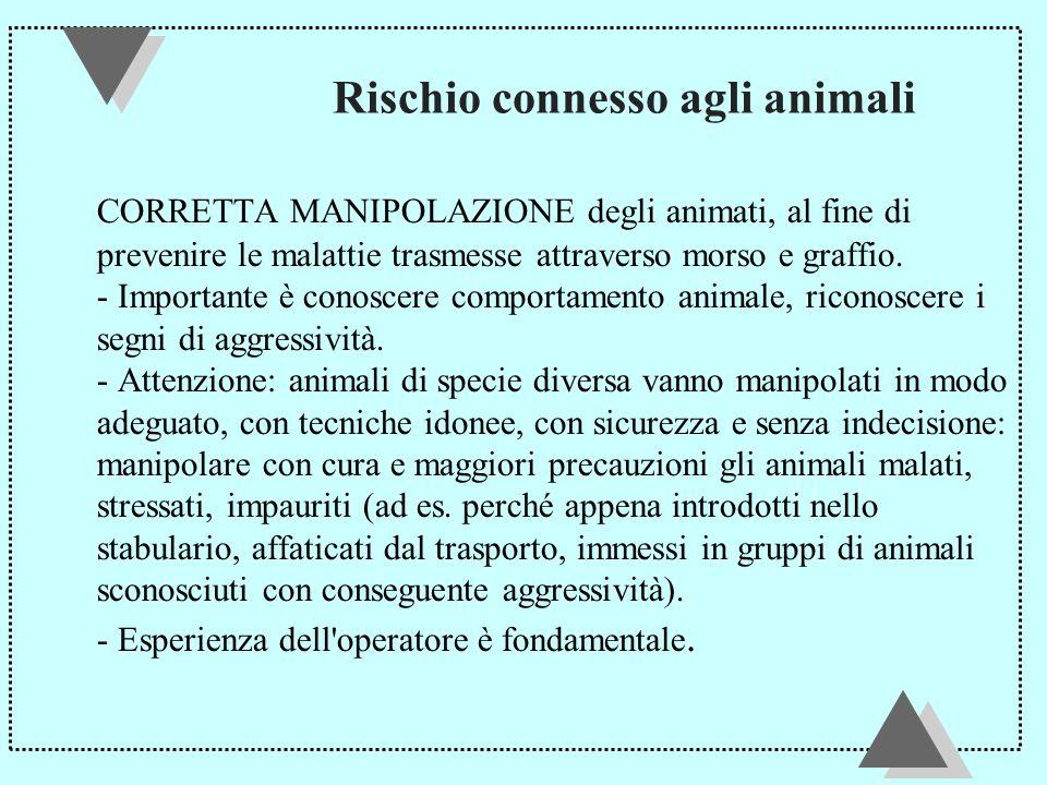 Rischio connesso agli animali