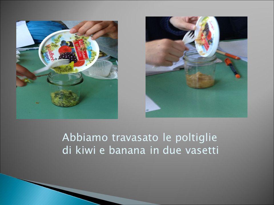 Abbiamo travasato le poltiglie di kiwi e banana in due vasetti