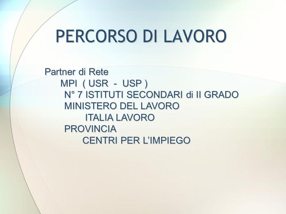 PERCORSO DI LAVORO Partner di Rete MPI ( USR - USP )