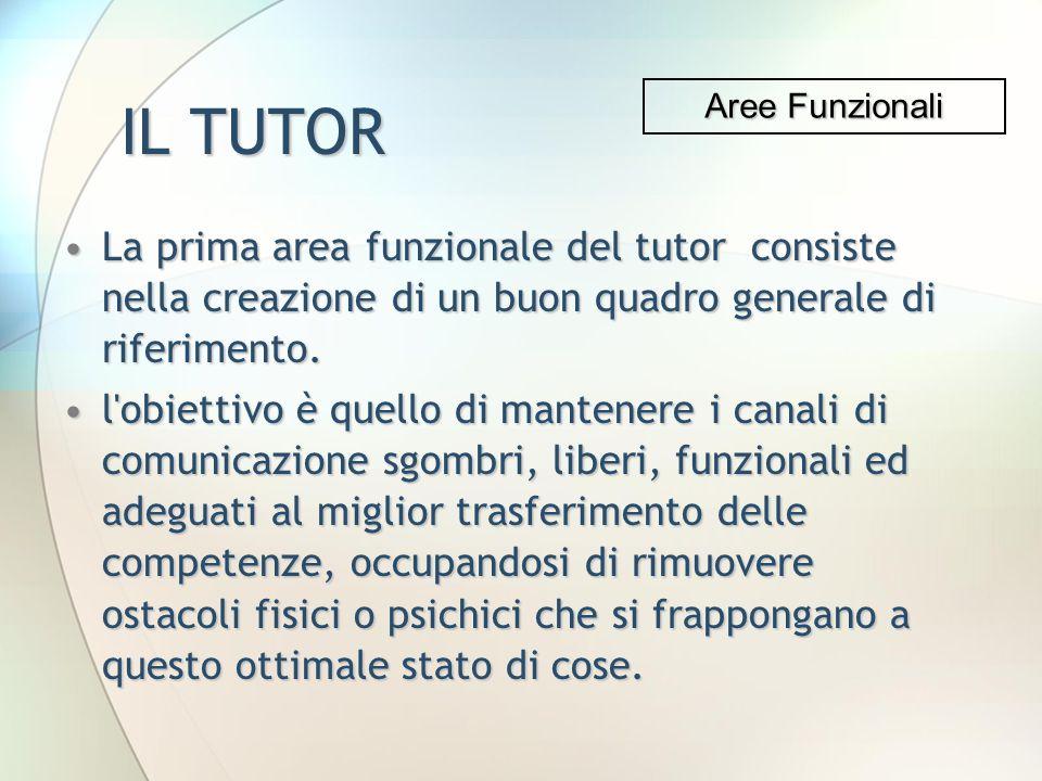 IL TUTOR Aree Funzionali. La prima area funzionale del tutor consiste nella creazione di un buon quadro generale di riferimento.