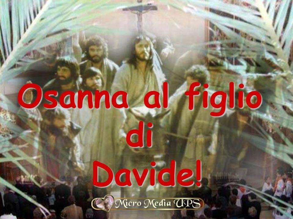 Osanna al figlio di Davide!