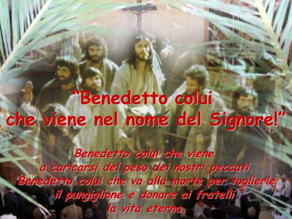 Benedetto colui che viene nel nome del Signore!