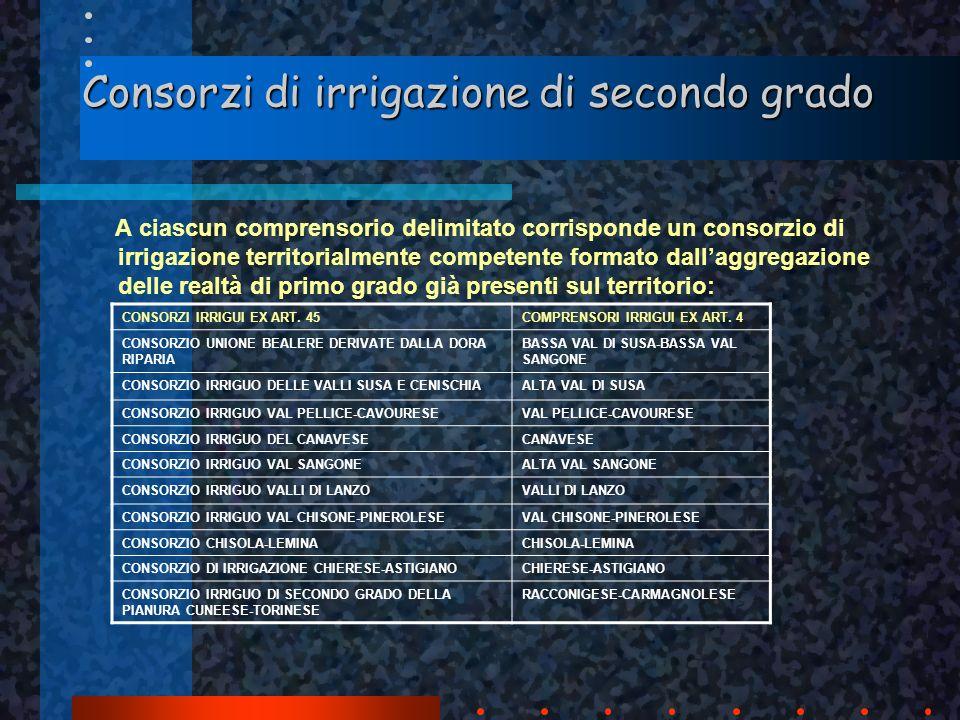 Consorzi di irrigazione di secondo grado