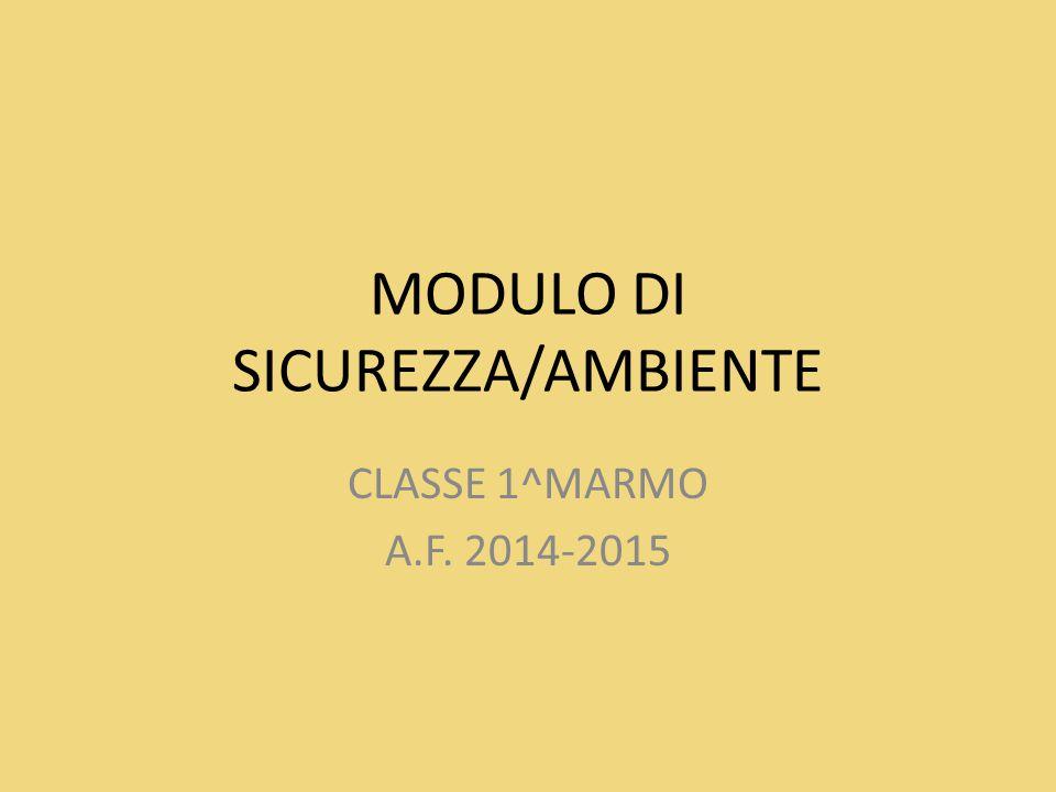 MODULO DI SICUREZZA/AMBIENTE