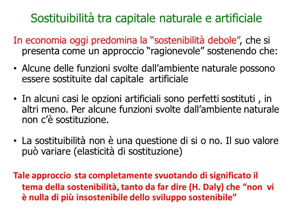 Sostituibilità tra capitale naturale e artificiale