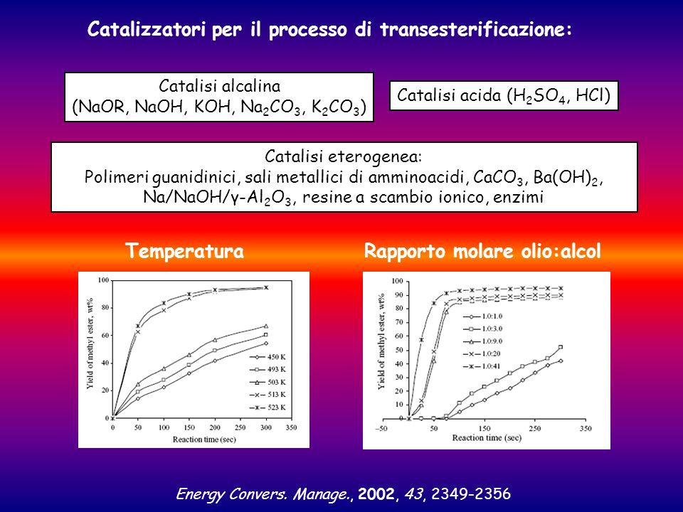 Catalizzatori per il processo di transesterificazione: