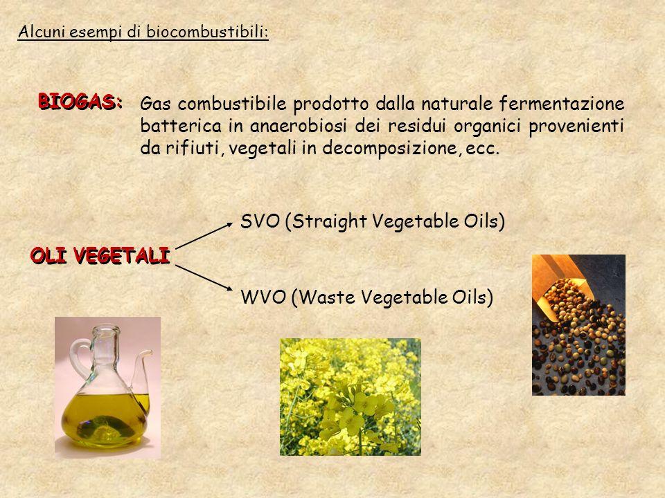 SVO (Straight Vegetable Oils)