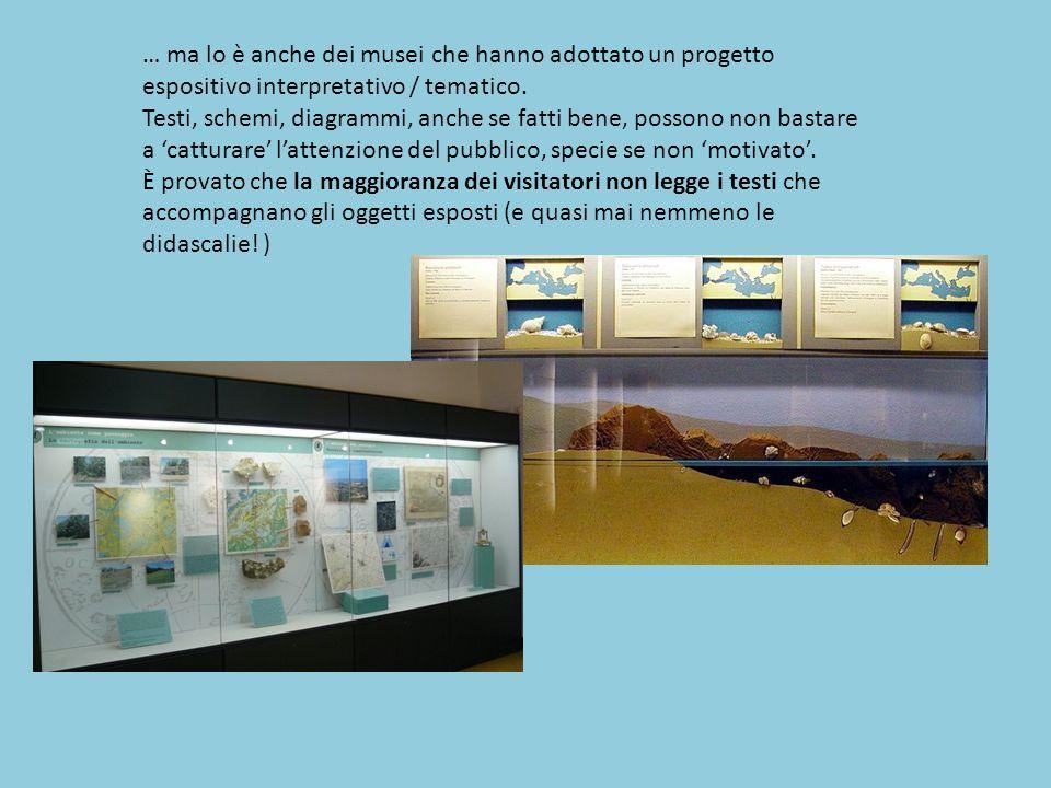 … ma lo è anche dei musei che hanno adottato un progetto espositivo interpretativo / tematico.