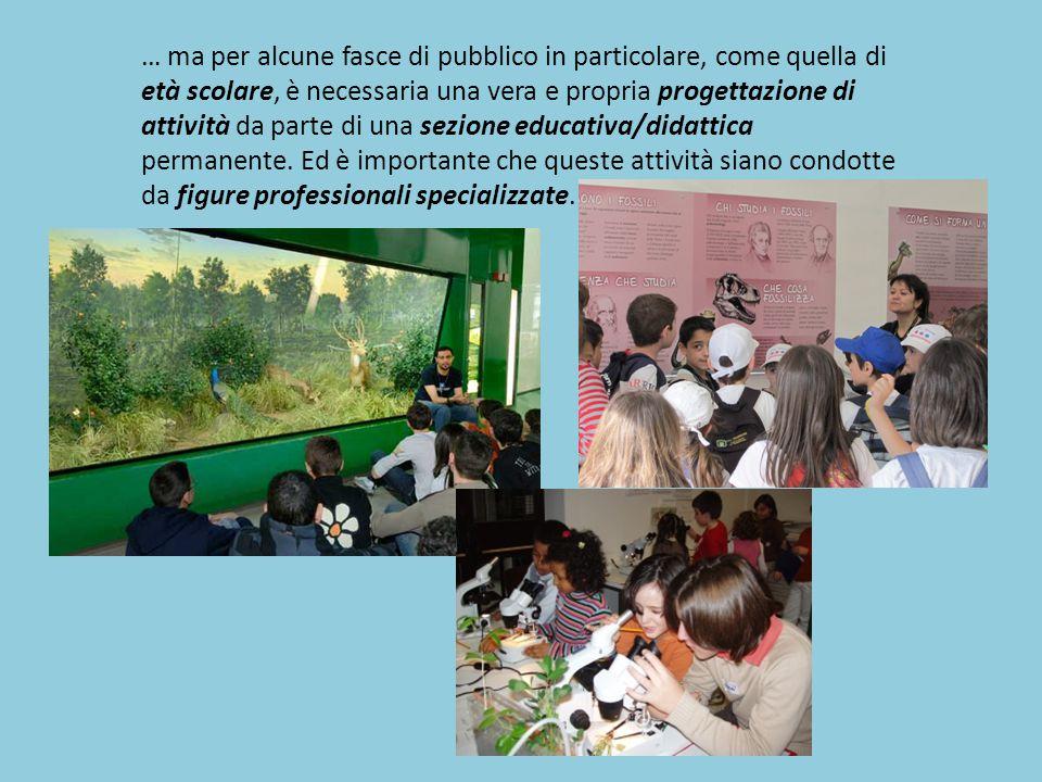 … ma per alcune fasce di pubblico in particolare, come quella di età scolare, è necessaria una vera e propria progettazione di attività da parte di una sezione educativa/didattica permanente.
