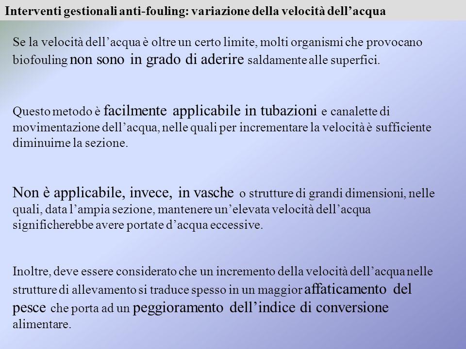 Interventi gestionali anti-fouling: variazione della velocità dell'acqua