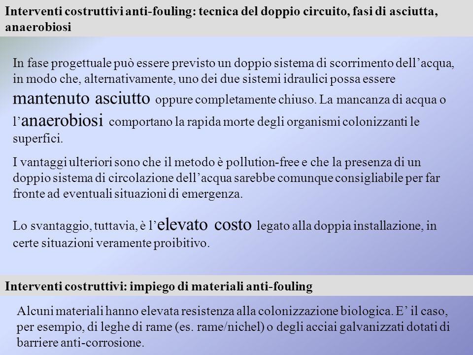 Interventi costruttivi anti-fouling: tecnica del doppio circuito, fasi di asciutta, anaerobiosi
