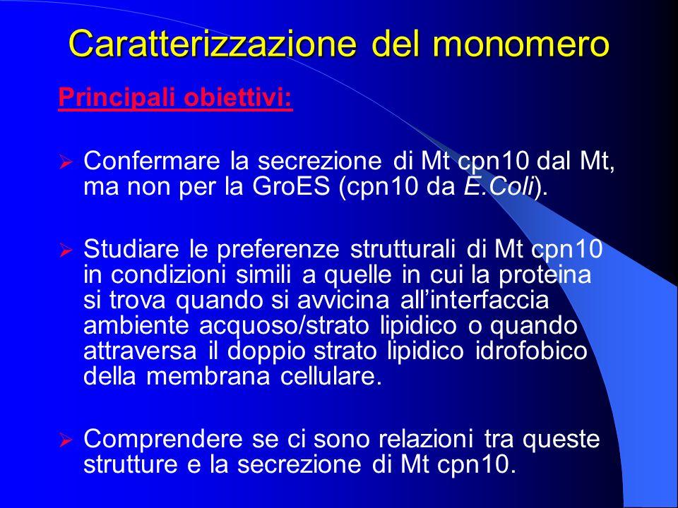 Caratterizzazione del monomero