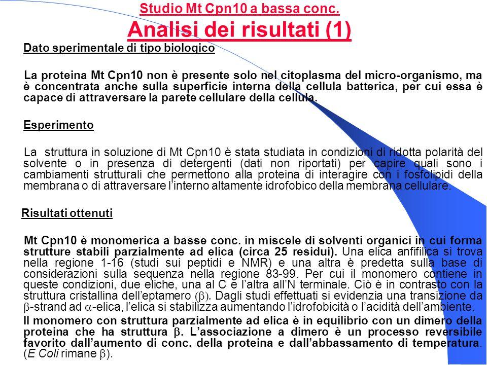 Studio Mt Cpn10 a bassa conc. Analisi dei risultati (1)