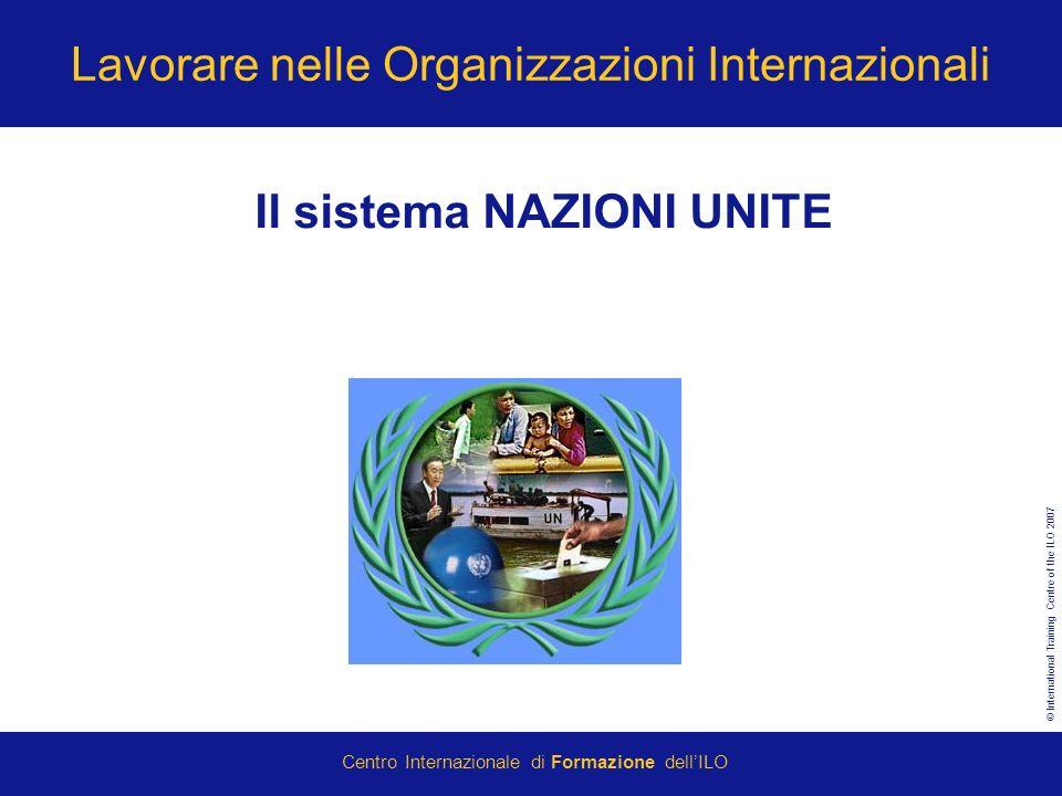 Lavorare nelle Organizzazioni Internazionali
