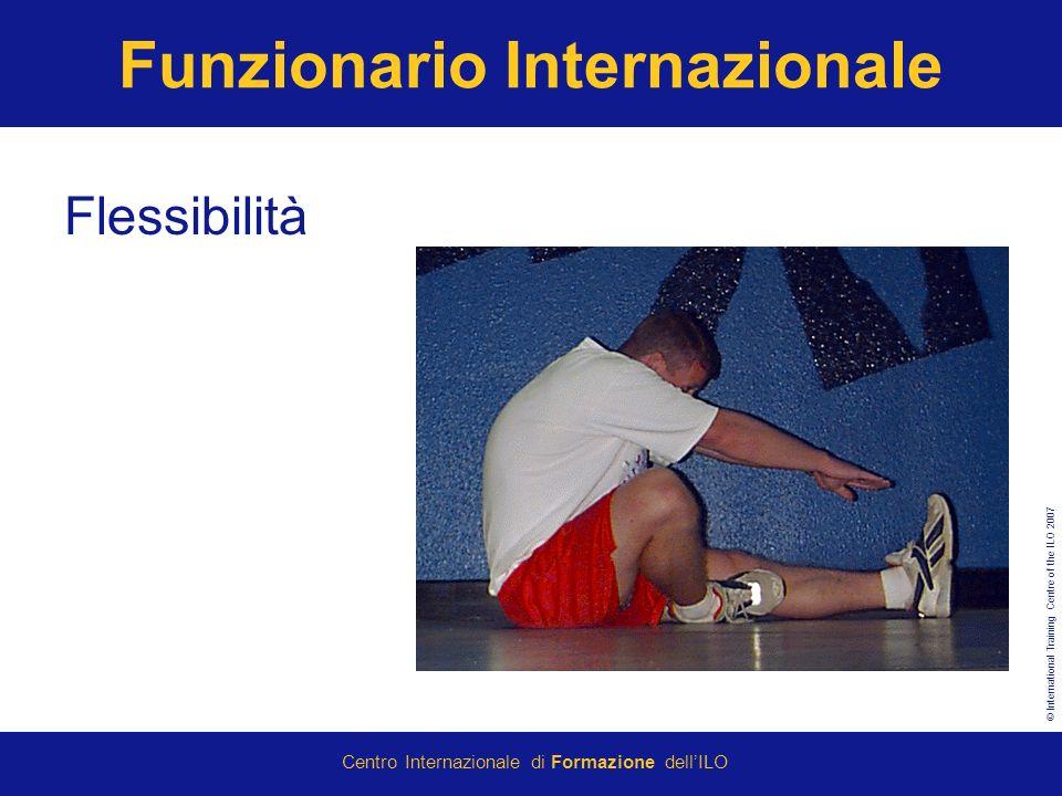Funzionario Internazionale