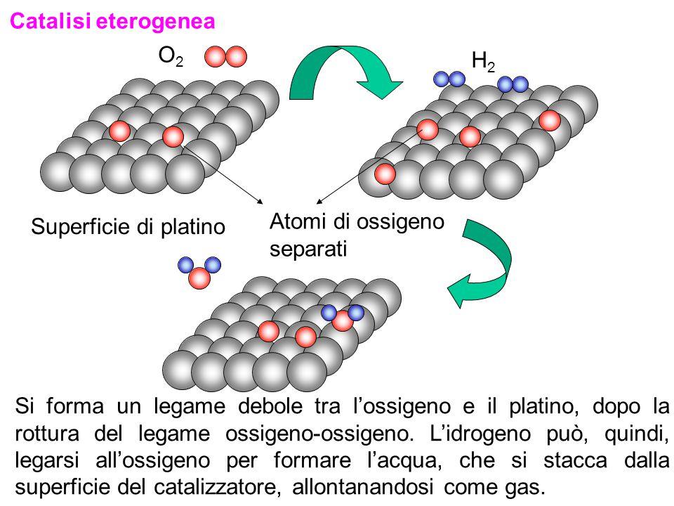 Catalisi eterogenea O2. H2. Atomi di ossigeno separati. Superficie di platino.