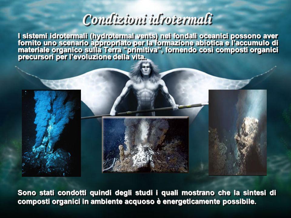 Condizioni idrotermali