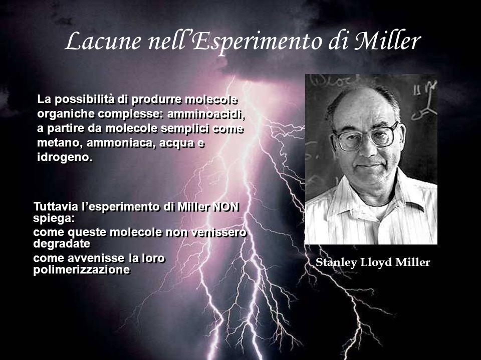 Lacune nell'Esperimento di Miller