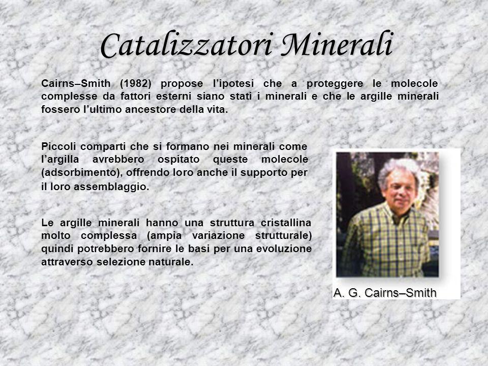Catalizzatori Minerali