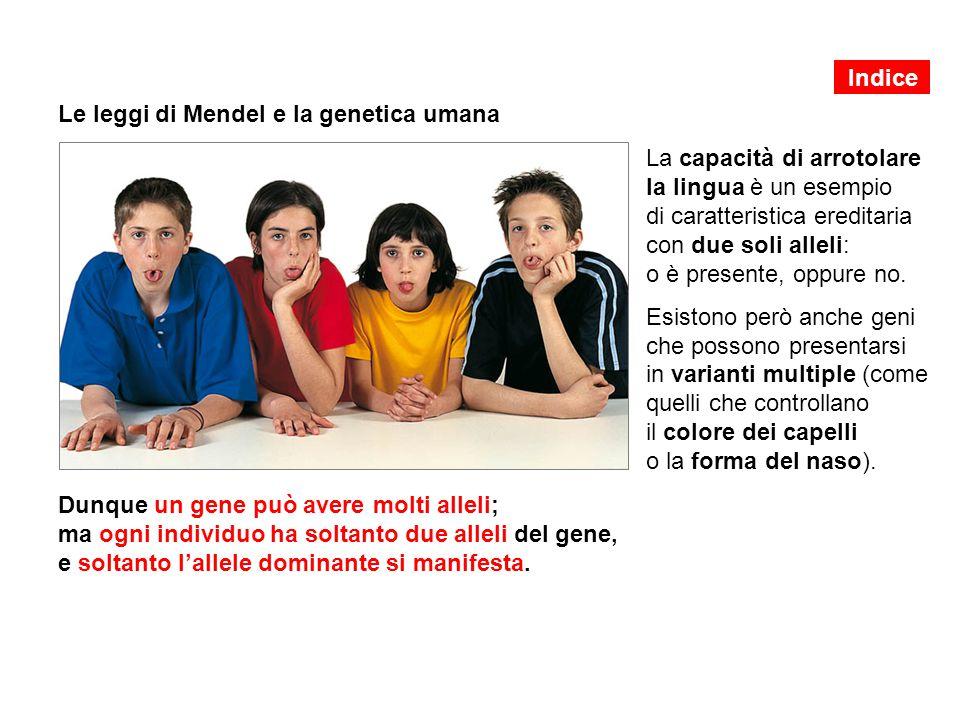 Le leggi di Mendel e la genetica umana