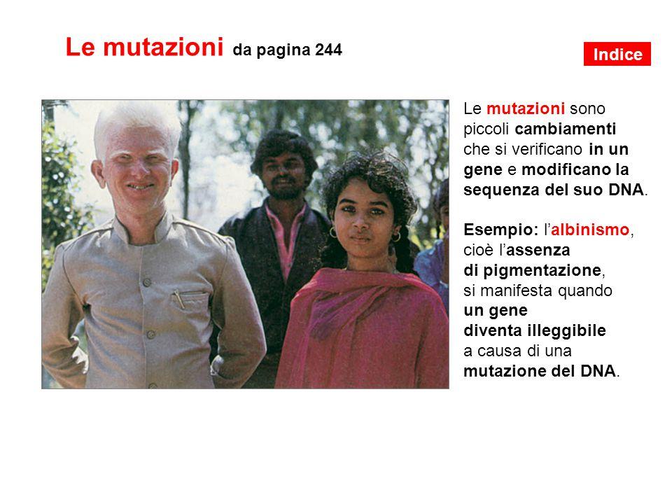 Le mutazioni da pagina 244 Indice