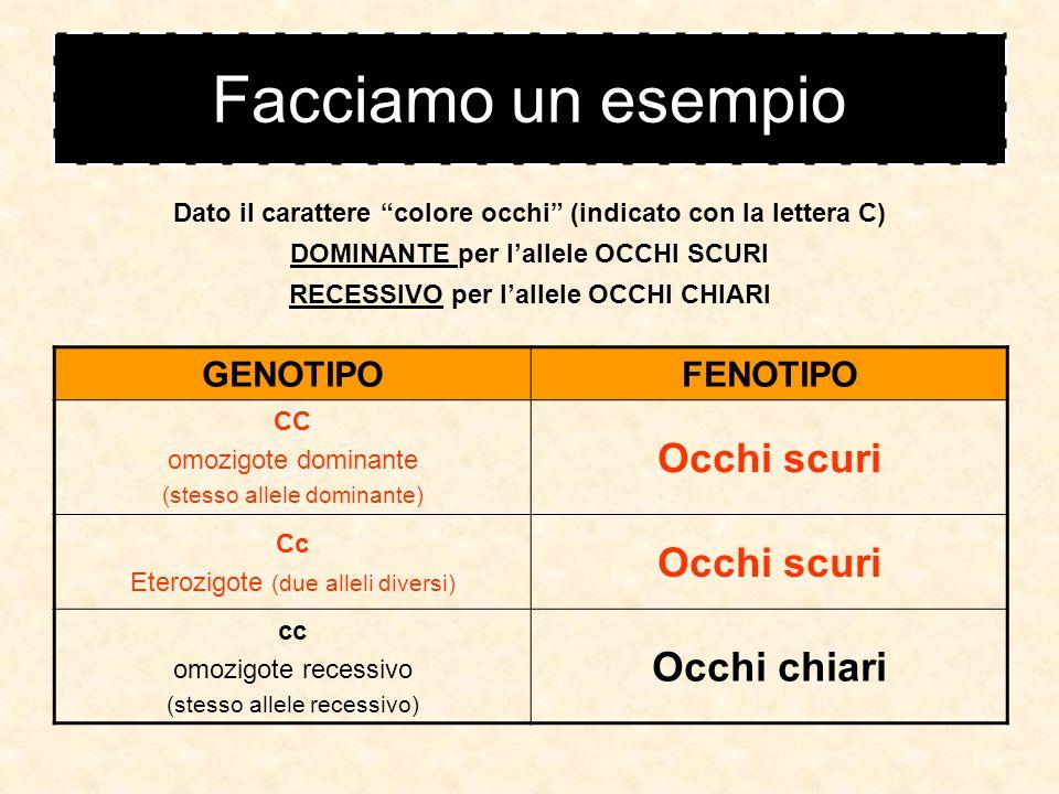 Facciamo un esempio Occhi scuri Occhi chiari GENOTIPO FENOTIPO CC