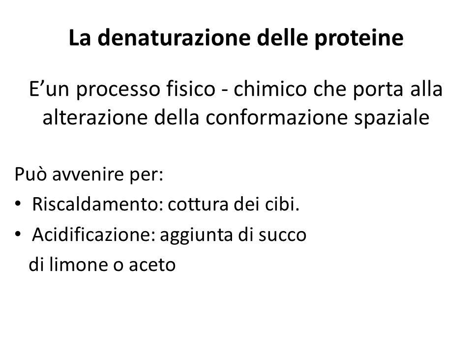 La denaturazione delle proteine