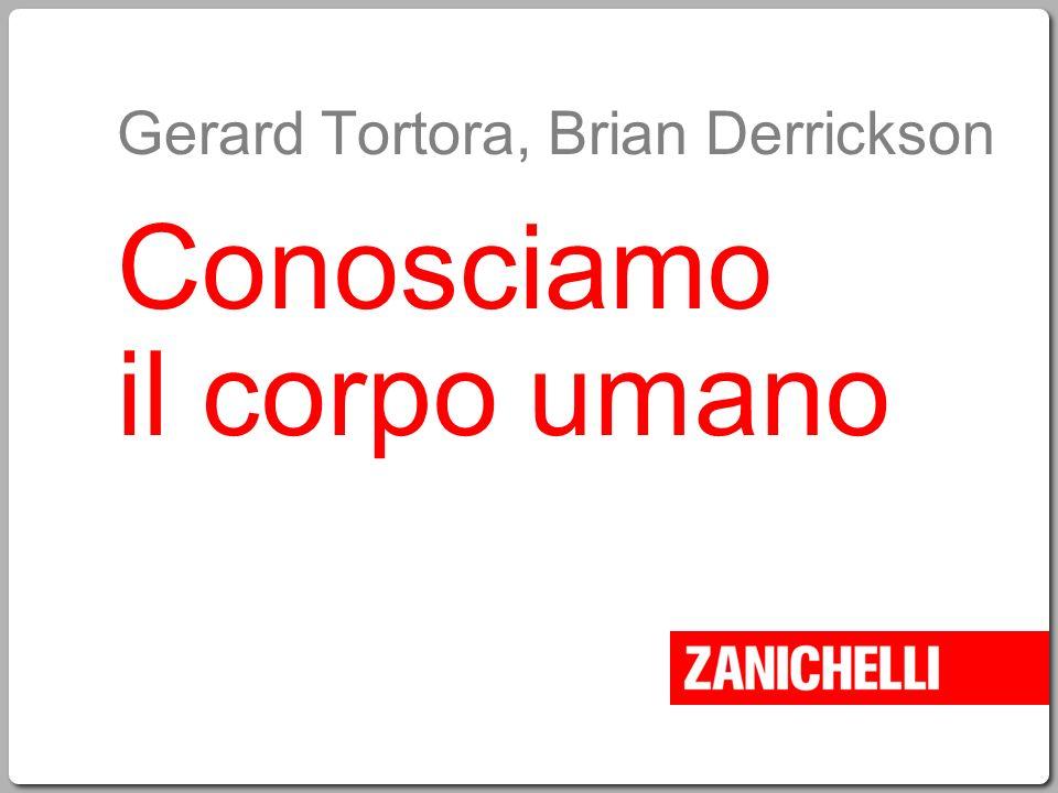 Gerard Tortora, Brian Derrickson