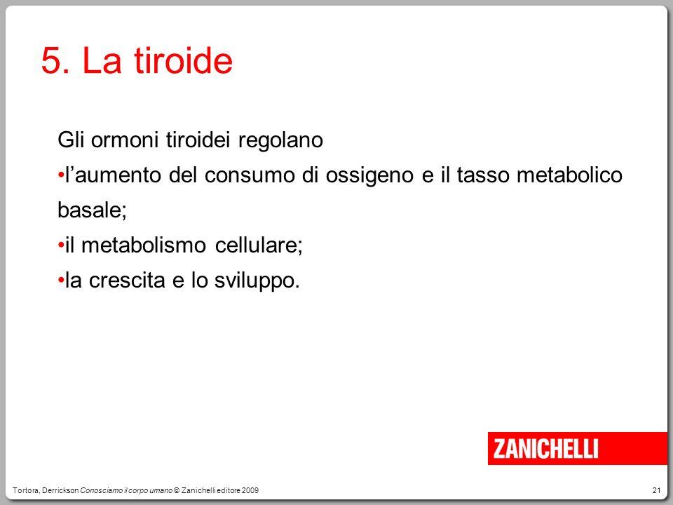 5. La tiroide Gli ormoni tiroidei regolano