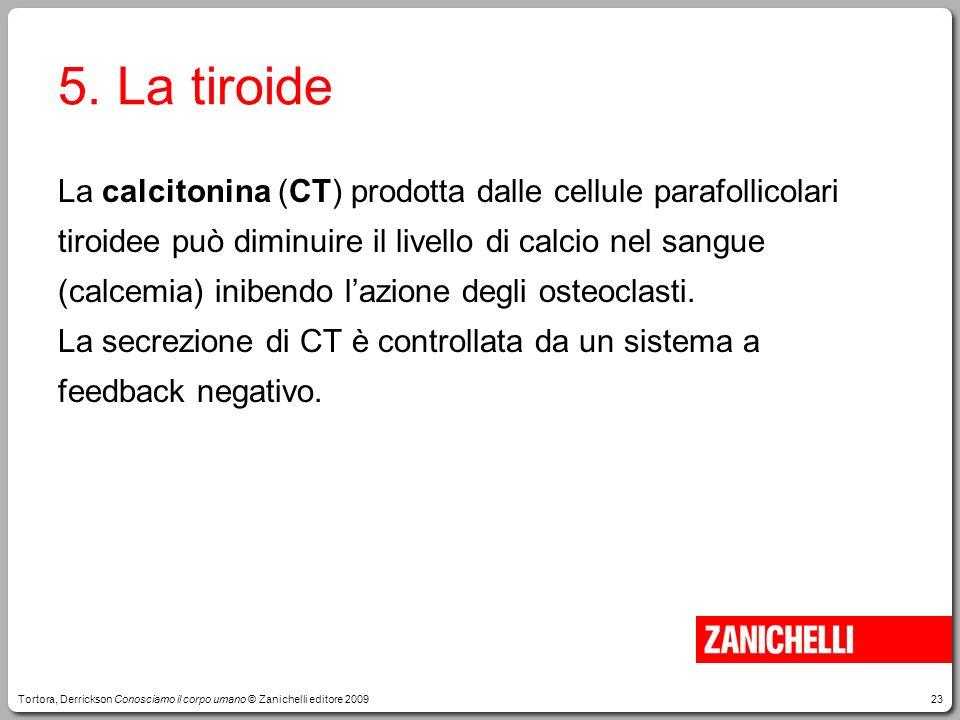 5. La tiroide