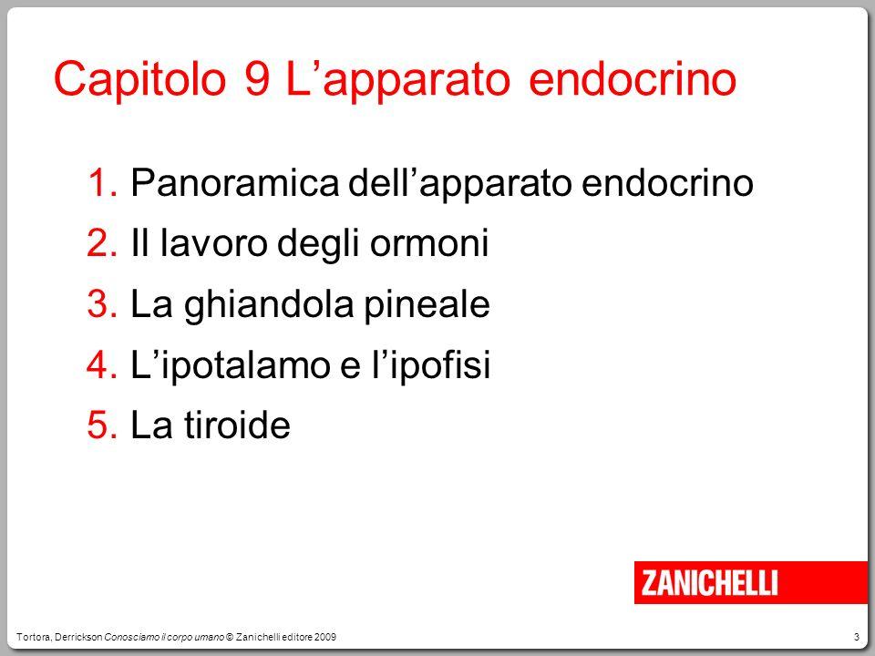 Capitolo 9 L'apparato endocrino